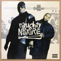 Naughty By Nature ‎– Iicons 2x12""