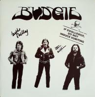 Budgie‎– If Swallowed, Do Not Induce Vomiting
